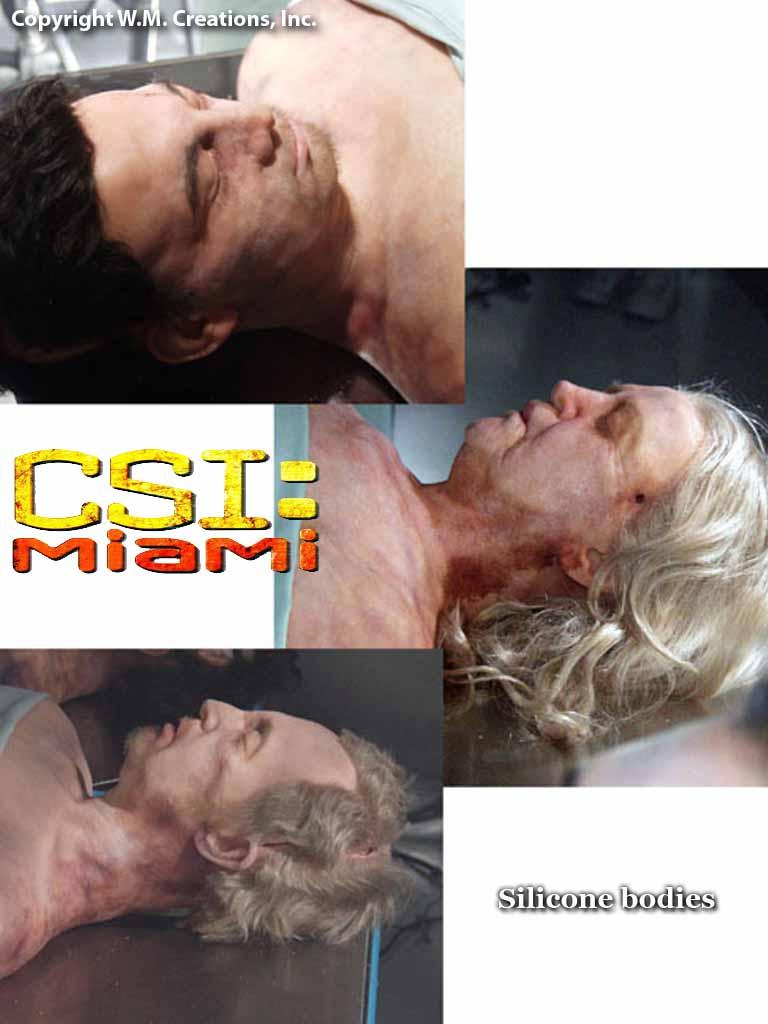 csim32.jpg