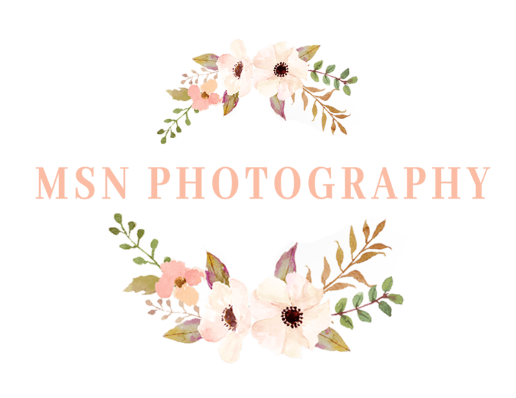 MSN Photography