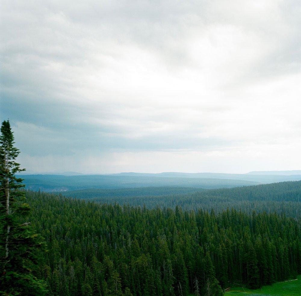 Yellowstone - 1.jpg
