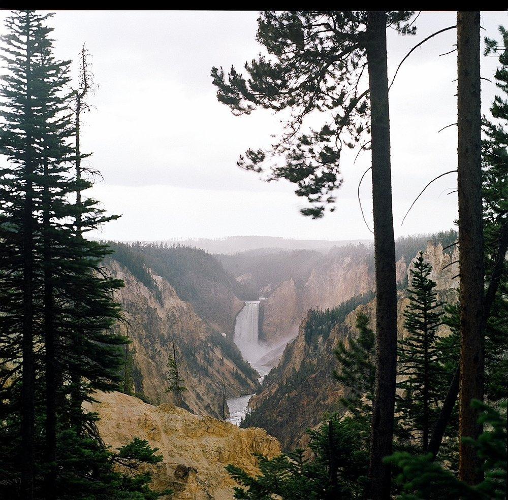 Yellowstone2 - 3.jpg