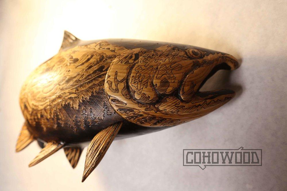 snj fish 1.jpg