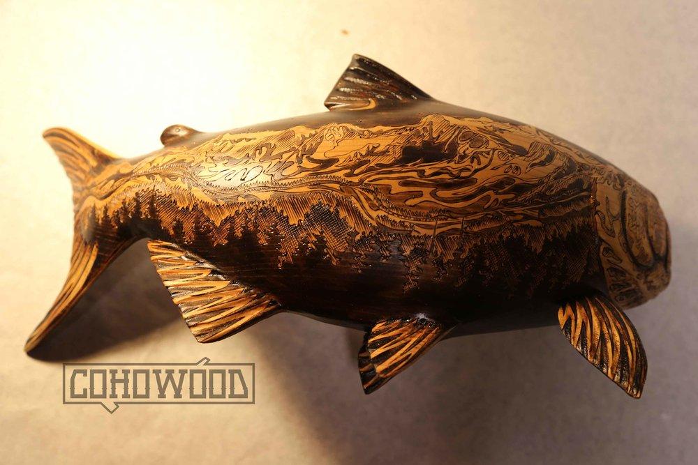 snj fish 2.jpg