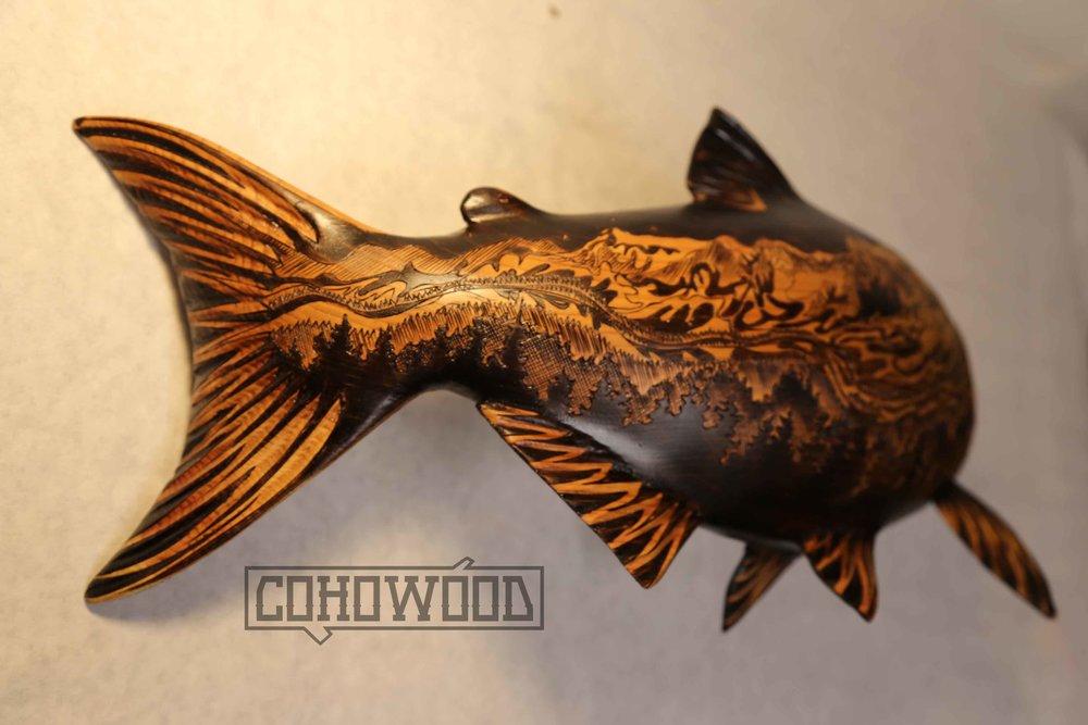 snj fish 3.jpg