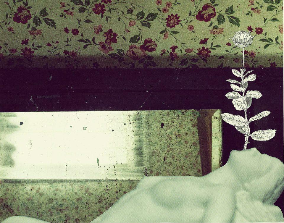 Art: Marianna Nichols (Floral Anatomy)