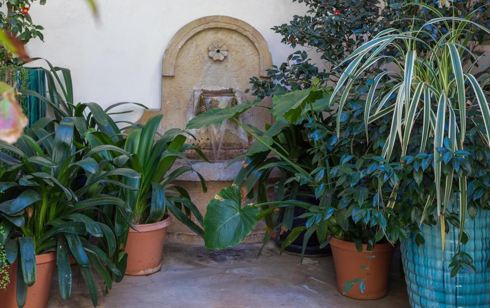 03 Classic Montecito Spanish-large-003-Courtyard-1500x944-72dpi_1.jpg