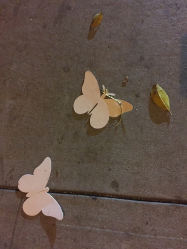 Photo taken by Molly Merson of an accidental installation on a street in San Francisco.