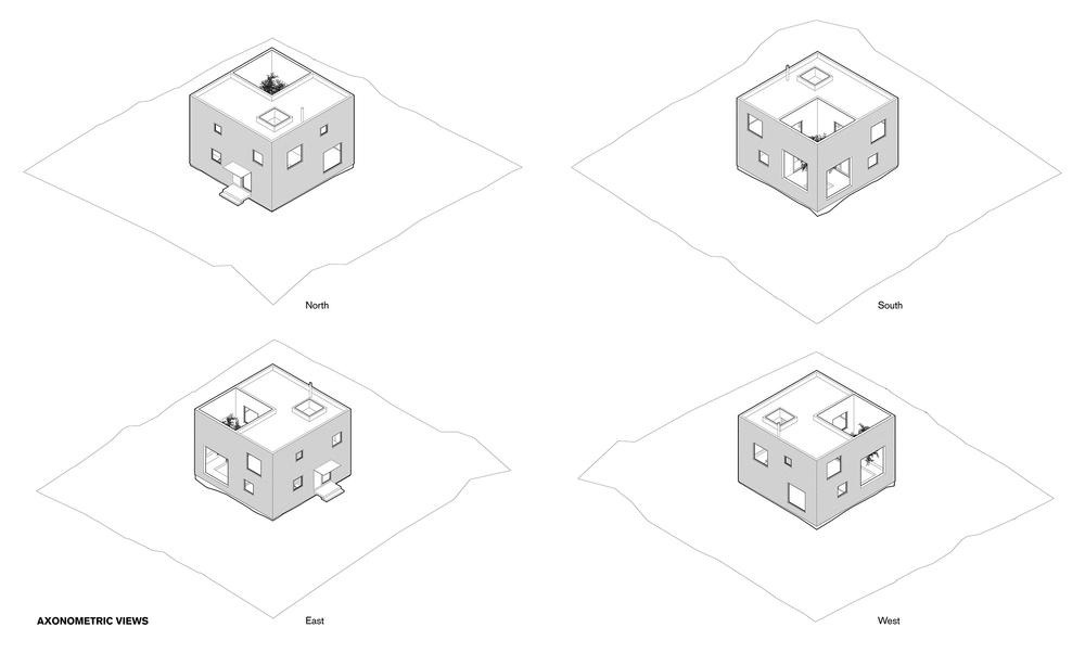 RCC-axons.jpg