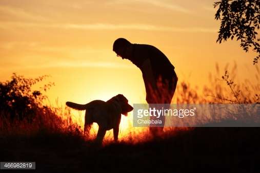 Photo by Chalabala/iStock / Getty Images