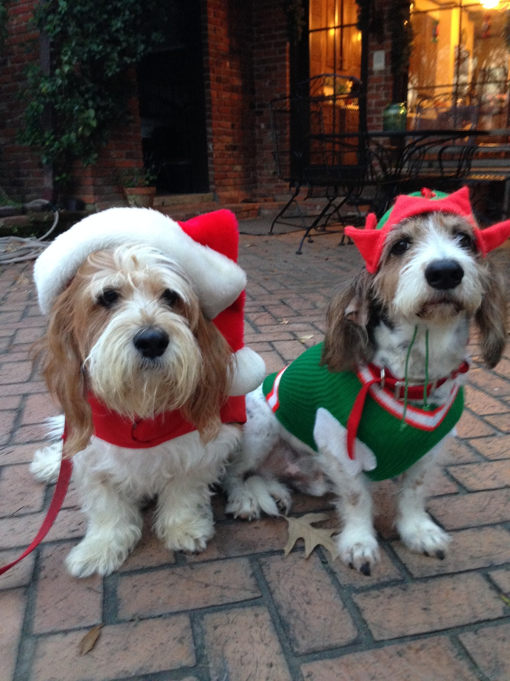 Santa and elf.JPG