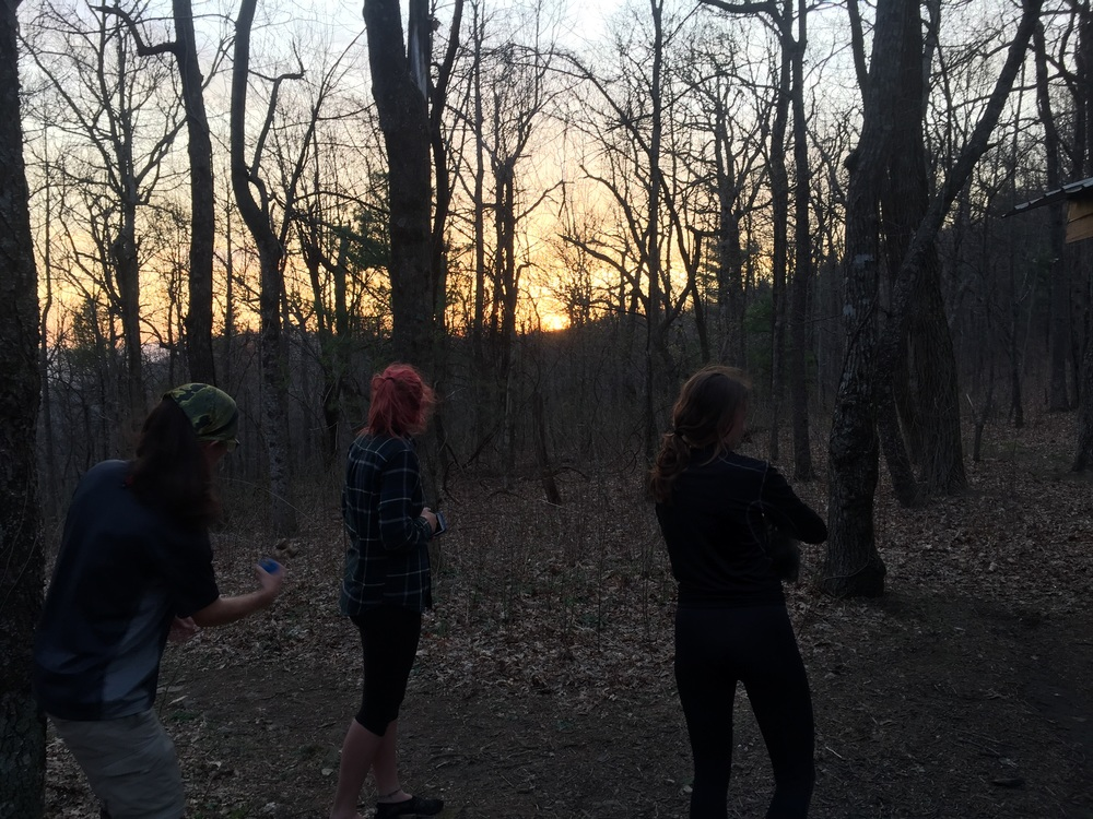 Rosebud and others watching the sunset