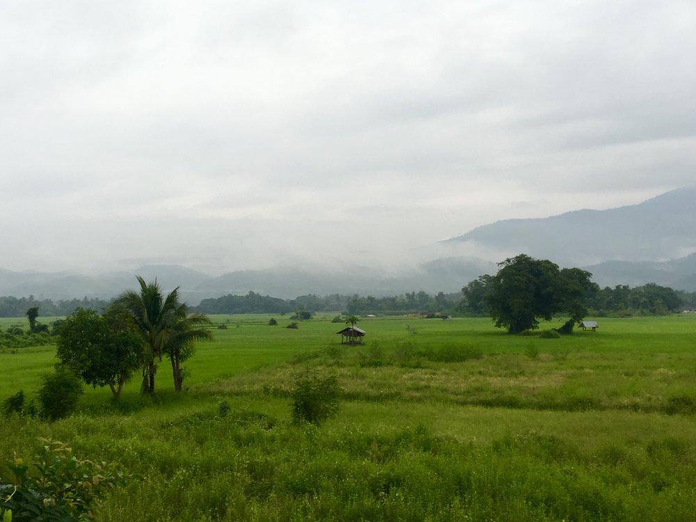 Fields around Mae Sariang