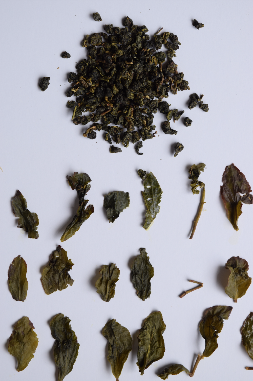 "Unfurled and dried ""Four Seasons"" oolong. Photo: Pete Halupka"