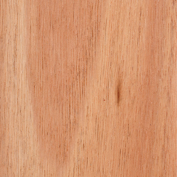 Eastern States Blackbutt, click for a detailed product data sheet