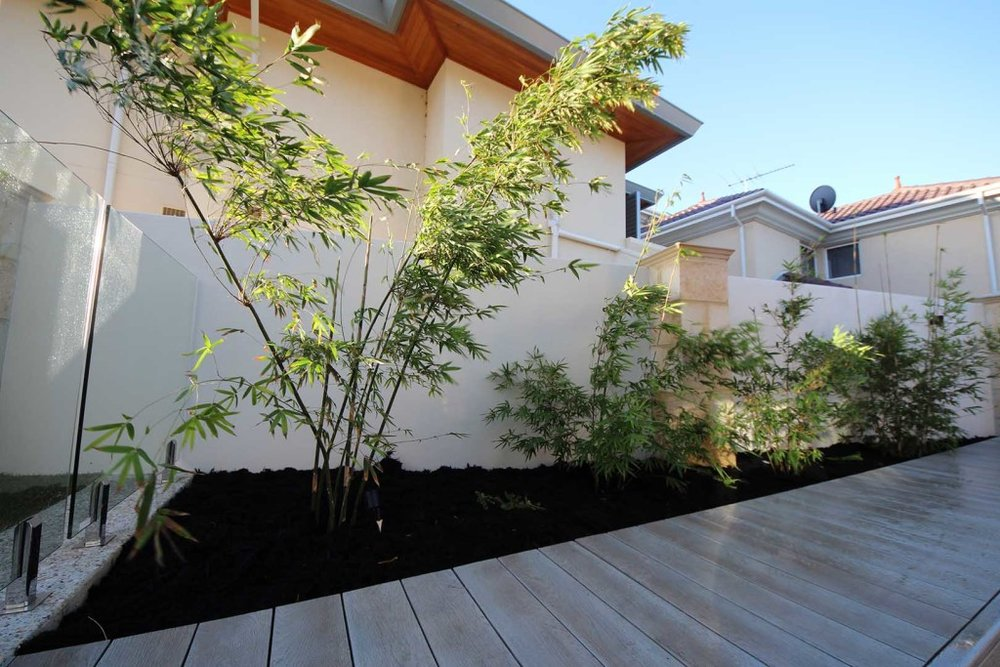 SolScapes-Perth-Landscaping-ParkStreet-Design-10-1024x683.jpg