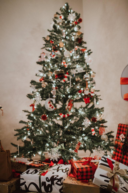 Christmas2017-22.jpg