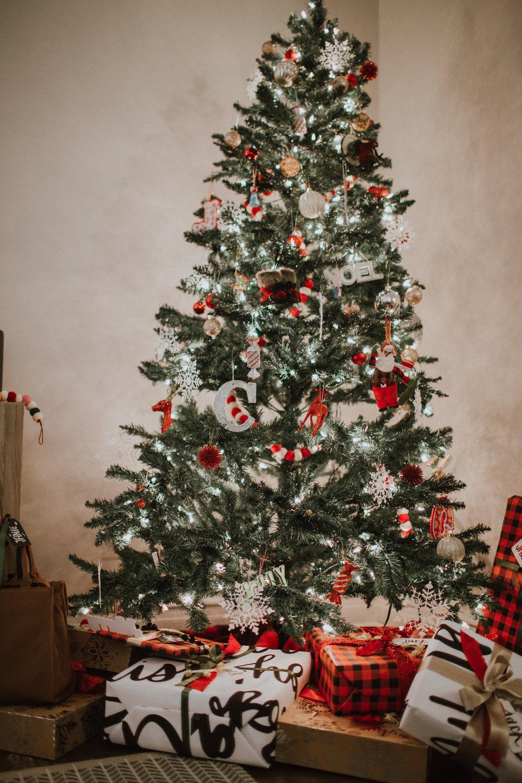 Christmas2017-24.jpg