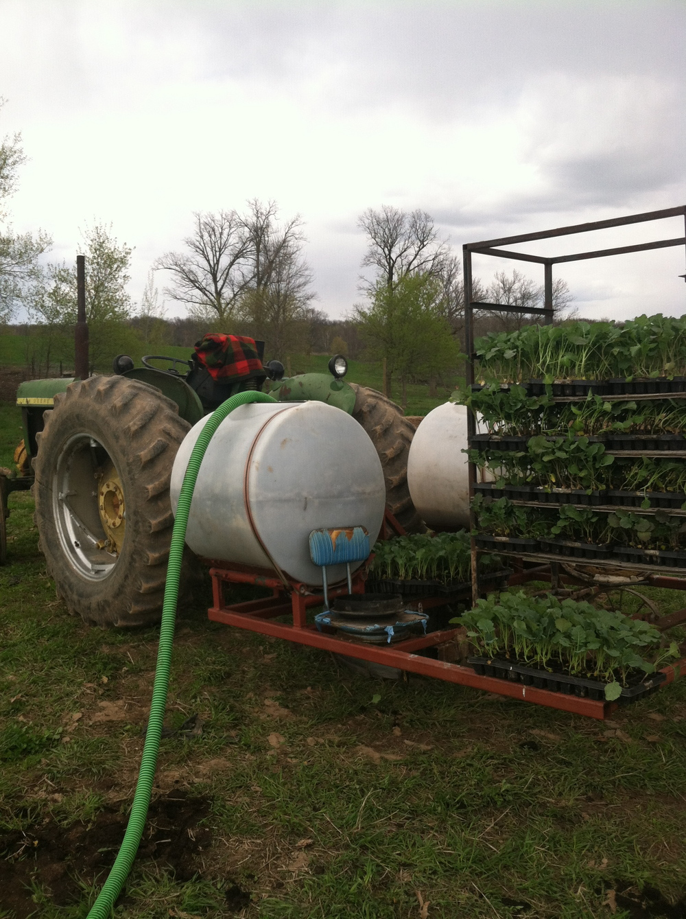 loading up the transplanter