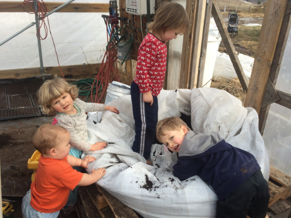 potting soil party!