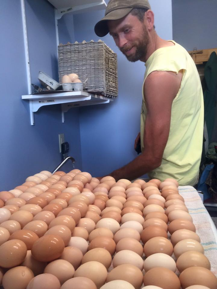 Sam is on egg washing duty this week.  That's a lot of eggs to wash!