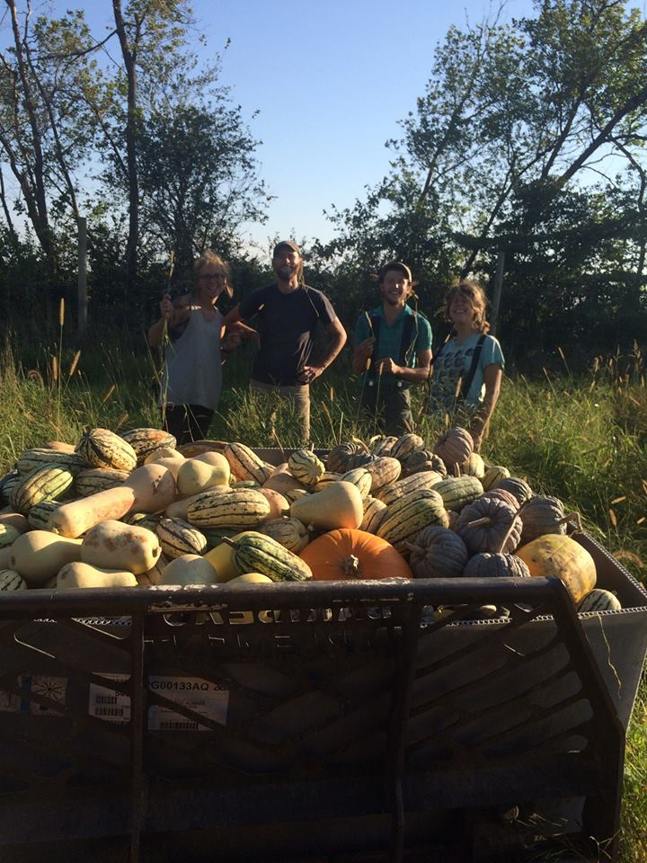 way to pick up some squash!