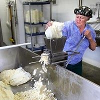 This isn't a picture of me using my curd mill, but it's not far off.