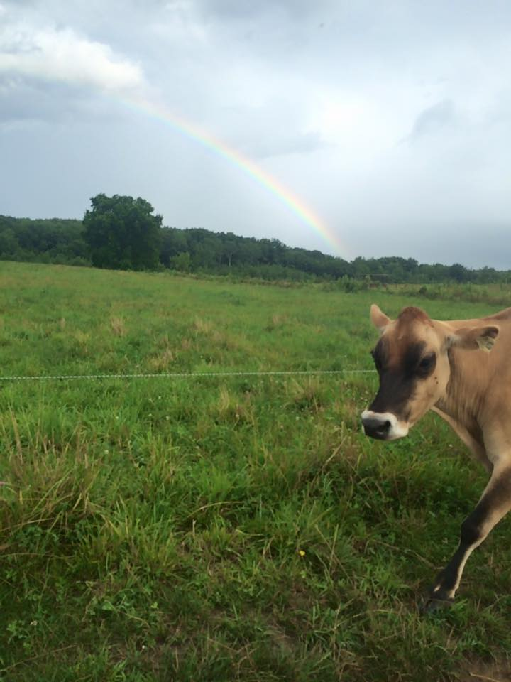 Our treasure at the end of the rainbow.