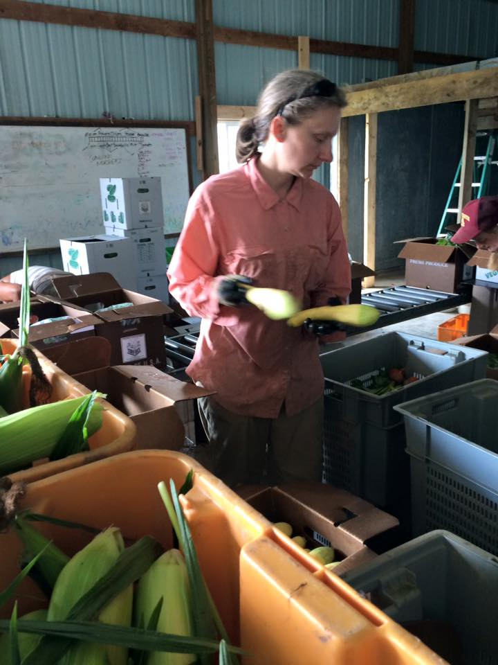 Aimee packing the zukes and summer squash!