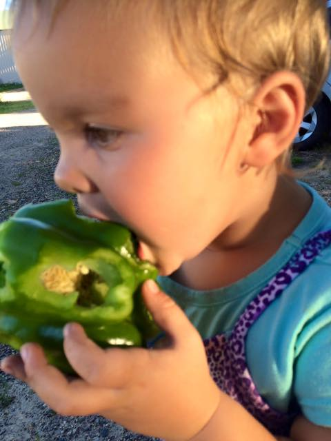 veggie loving kid!