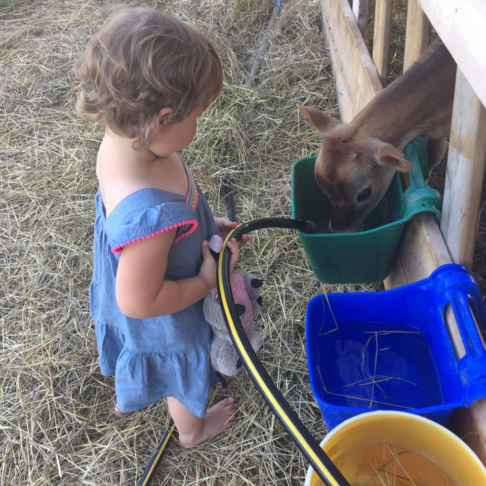Farmhand in training