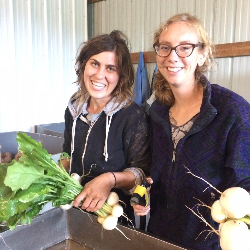 Miranda and Haley together again on the farm!  So nice to have former employees come back for a visit and to spend time in the fields.