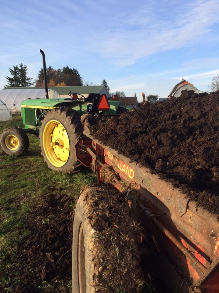 spreading gorgeous farm made compost in gratitude to our soil that provided so much for all of us this season