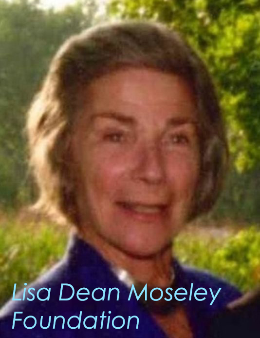 lisa dean moseley.jpg