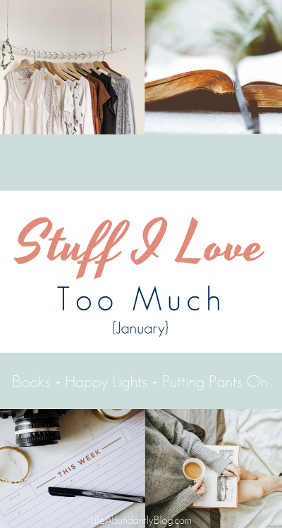 Super funny and some good stuff too! Great collection of Christian book, helpful info for planning, and Bible Study and resources for winter blues!