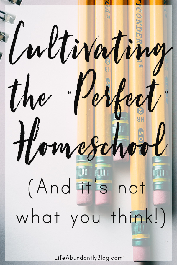 If you are struggling with feeling like your homeschool is floundering, you can't find the right curriculum, or you're never organized enough, you'll definitely be encouraged!