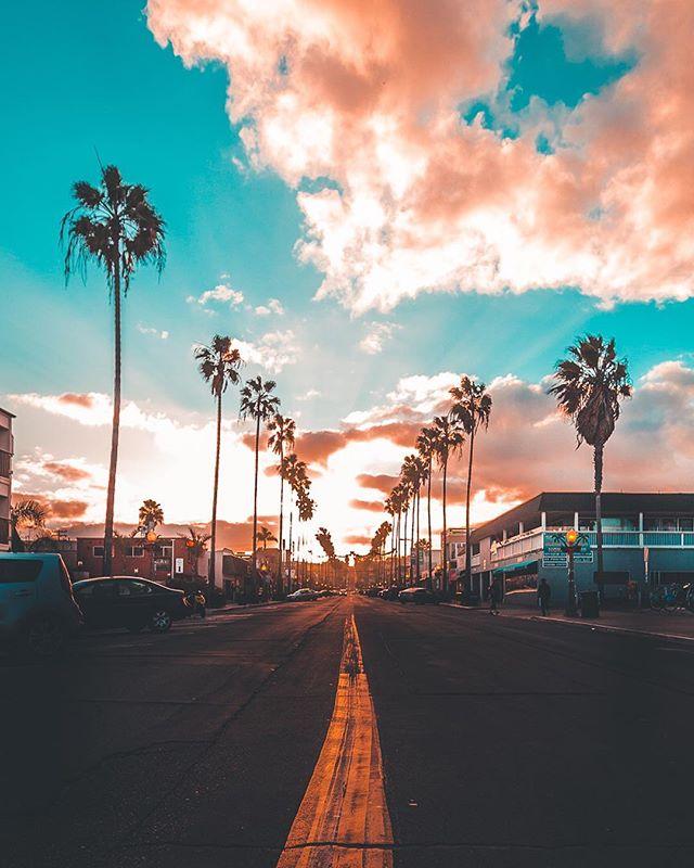 Follow the palm trees 🌴