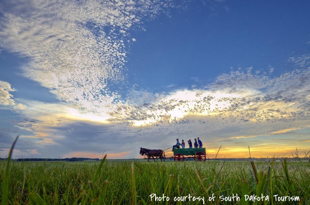 Pageant Wagon on Prairie - web.jpg