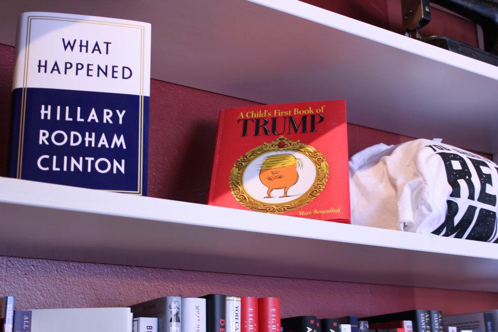 Trump children's book-8093.jpg