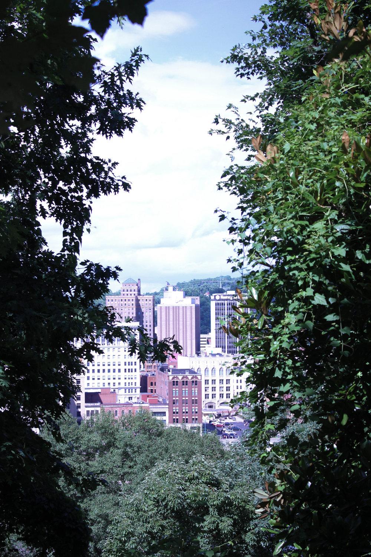 city and nature-5007.jpg