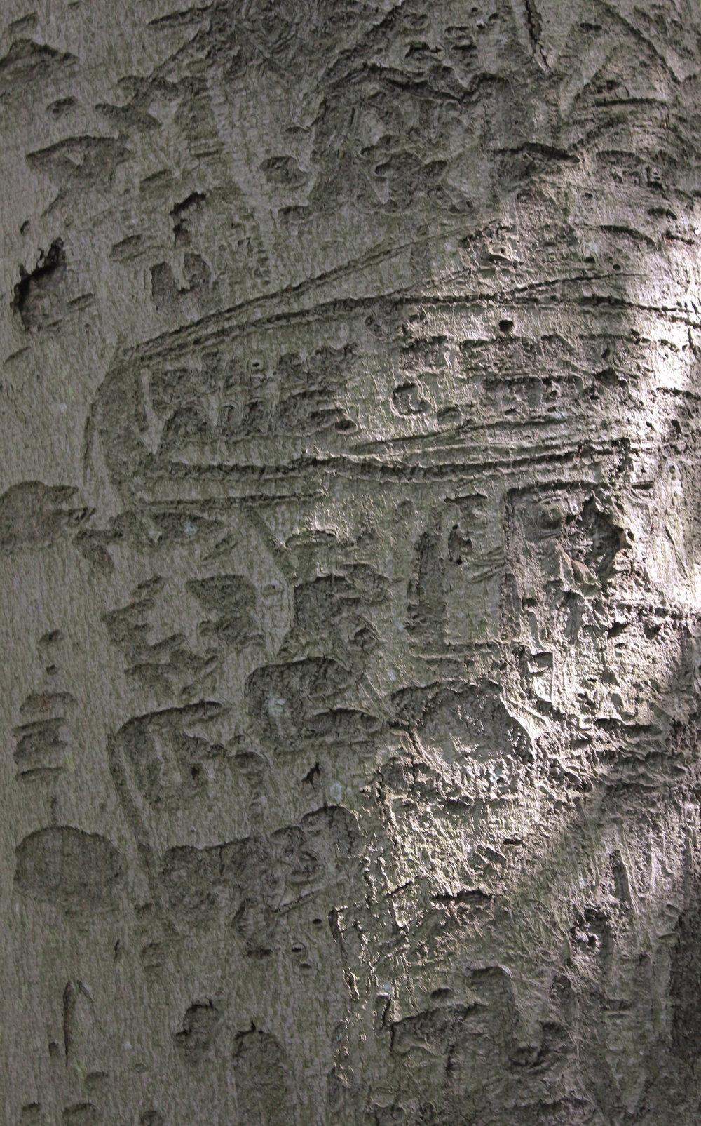 carvings-4972.jpg