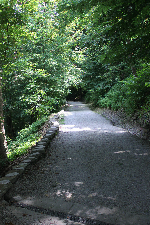 nature trail-4938.jpg