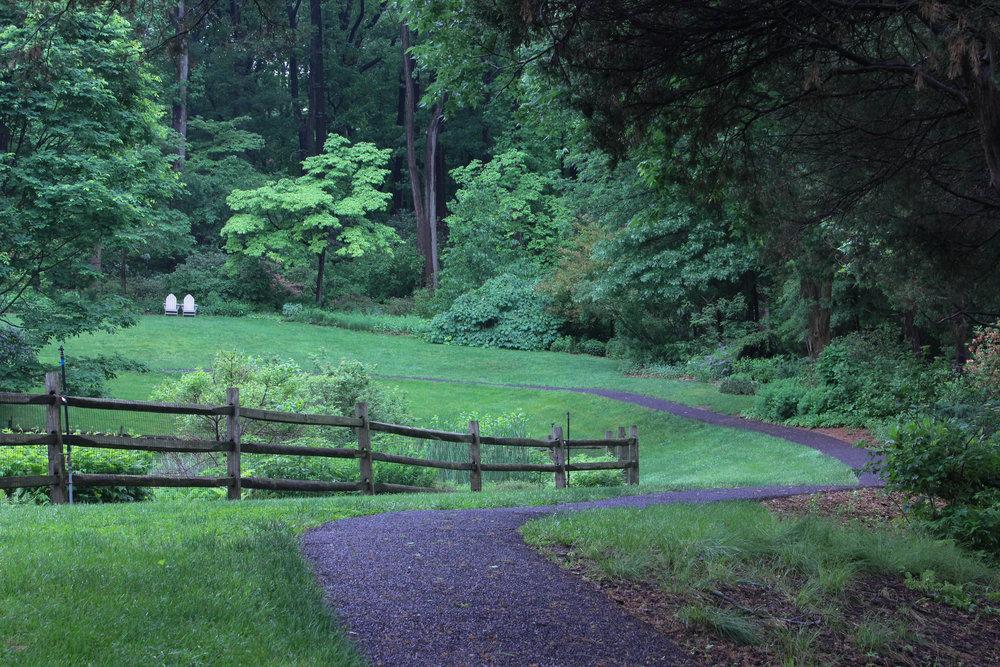 trail curve-3416.jpg