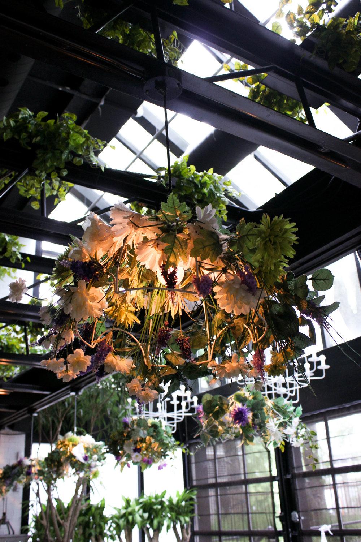 plants-in-restaurant-6179.jpg
