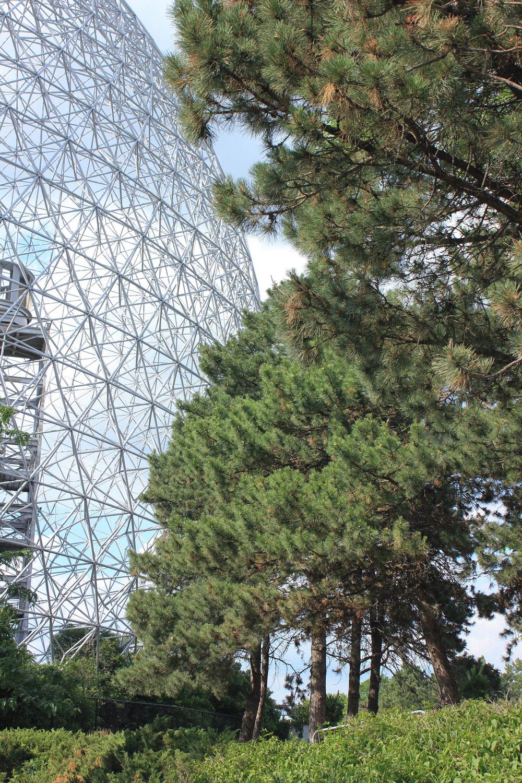 biosphere-5565.jpg
