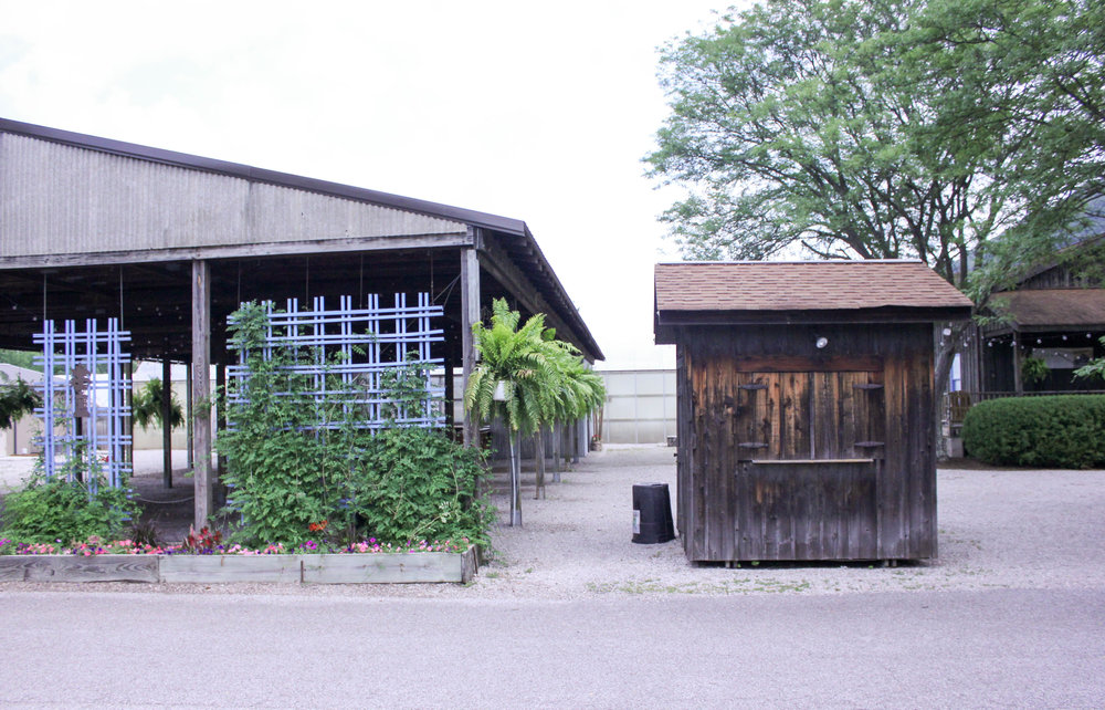 trellis-shed-4431.jpg