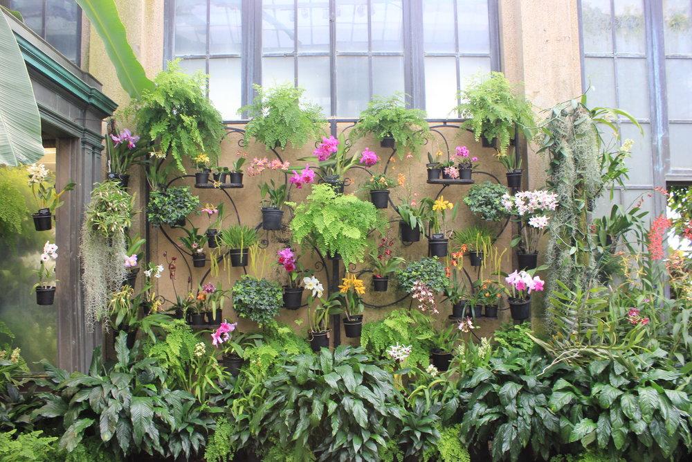 longwood-gardens-plant-wall