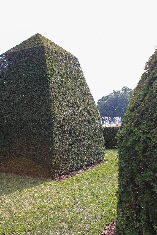 walls-7005.jpg