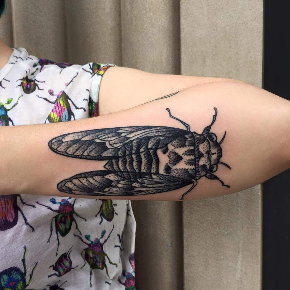 bug-cicada-linework-detail-arm-blackandgrey-tattoo-LA-LosAngeles-besttattoo-besttattooartist-besttattooartists-top-pictures-images-photo-tat-ink-inked-tinedefiore-guestartist-rabblerousertattoo