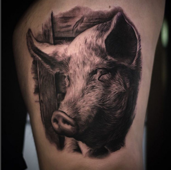 pig-pighead-blackandgrey-tattoo-LA-LosAngeles-besttattoo-besttattooartist-besttattooartists-top-pictures-images-photo-tat-ink-inked-joshgrable-guestartist-rabblerousertattoo