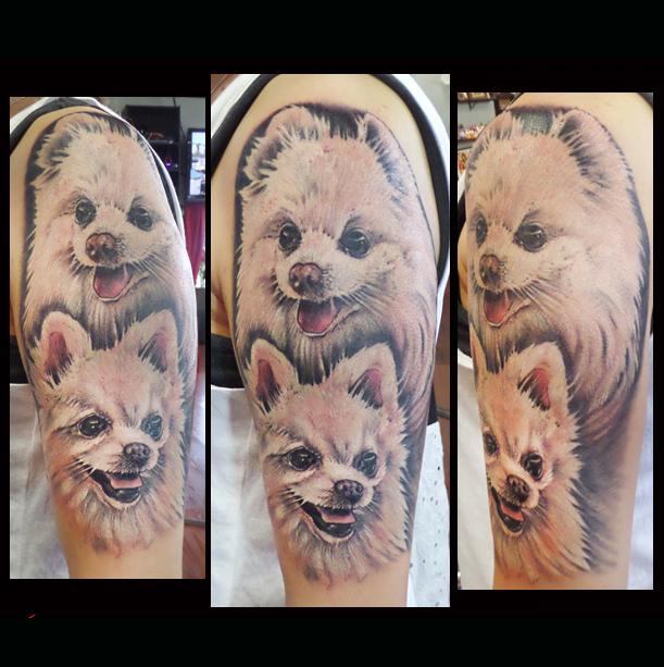 pomeranians_tattoo_portrait_ericalvino.jpg