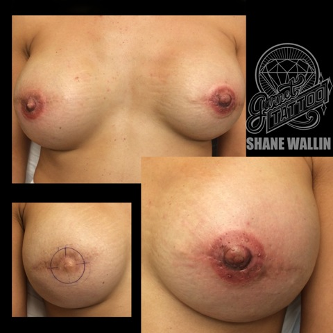 heidi_nipples_cropped_3d_areola_pigmentation.jpeg